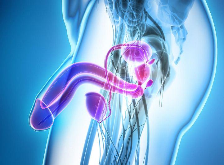 sintomi diabete ed erezione
