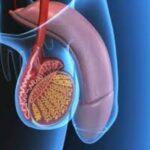 Fattori di rischio della disfunzione erettile e problemi di erezione